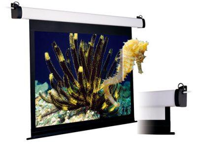 видеопроекционные экраны